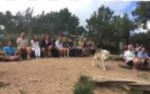 Mission;Wolfでのオオカミと観光客